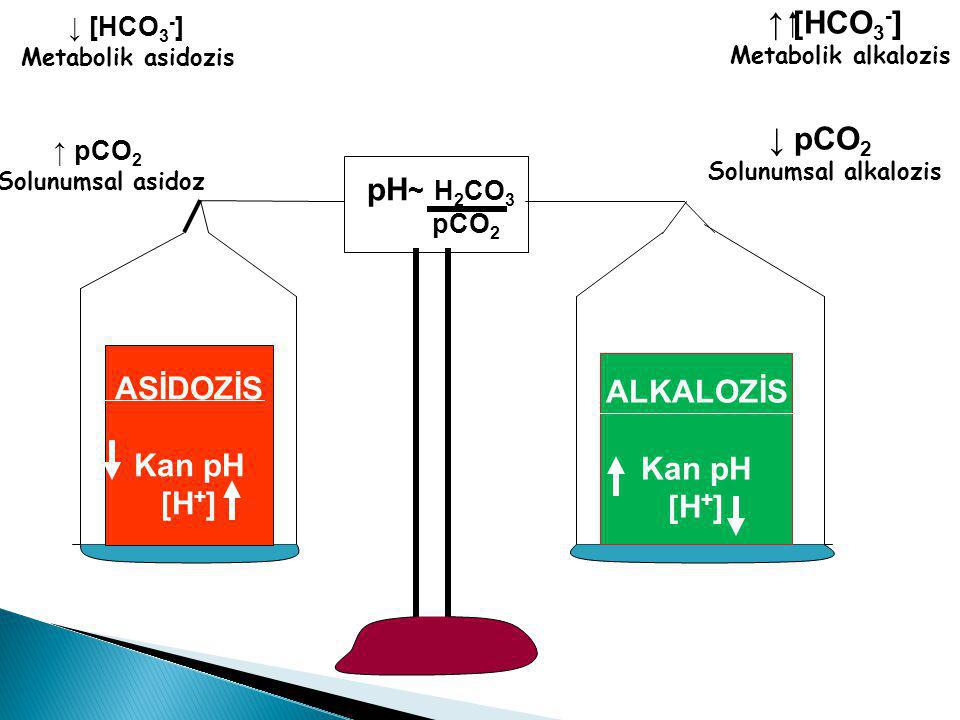 ↑ [HCO3-] ↓ pCO2 pH~ H2CO3 ASİDOZİS Kan pH [H+] ALKALOZİS Kan pH [H+]